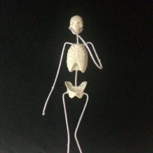 Esqueleto 2 (3)